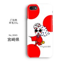 YCASE-0045-MIYAZAKI-Image