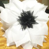 Jumbo-Flower-White
